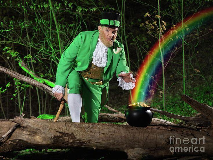 Leprechaun With Pot Of Gold Photograph