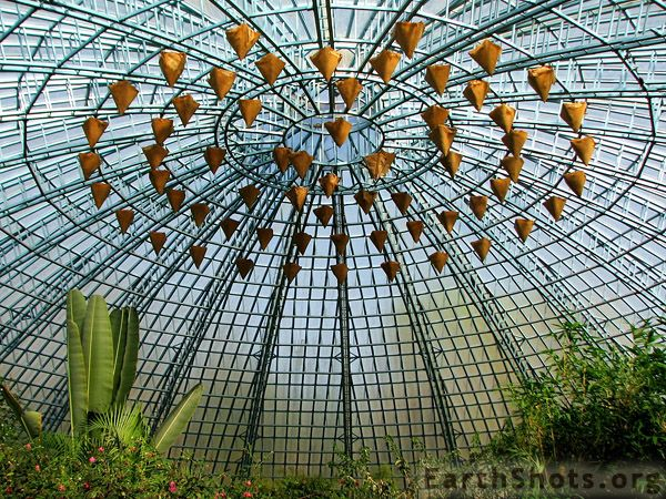 Butterfly conservatory, niagra falls canada