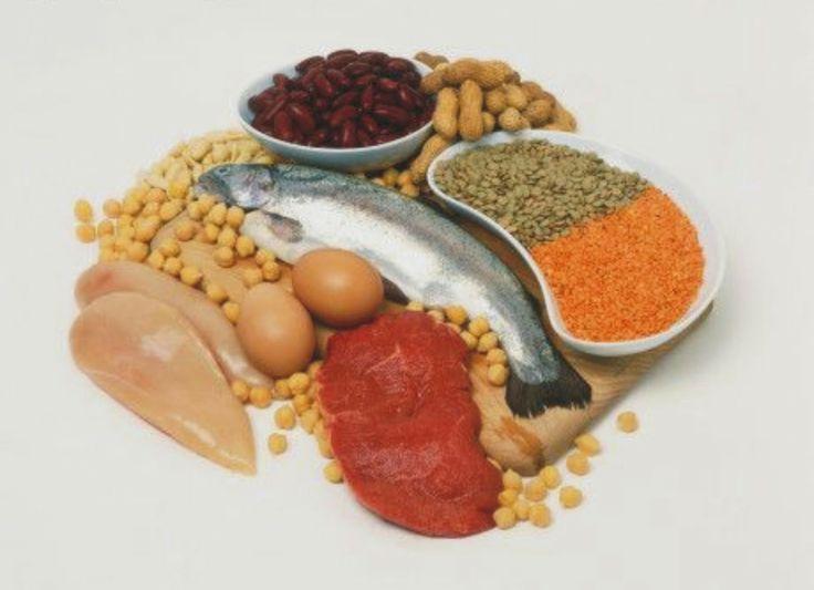 mengkonsumsi makanan yang berprotein tentunya sangat baik untuk kesehatan dan kebugaran anda.