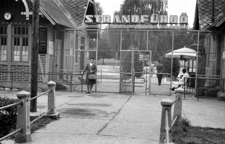 Bejárat a Hejő hídjáról nézve. 1963