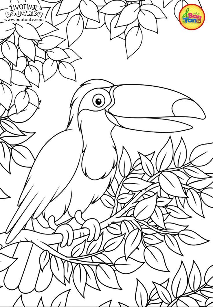 Animaux à colorier pour les enfants - Feuilles de calcul gratuites pour la maternelle, livres à ...