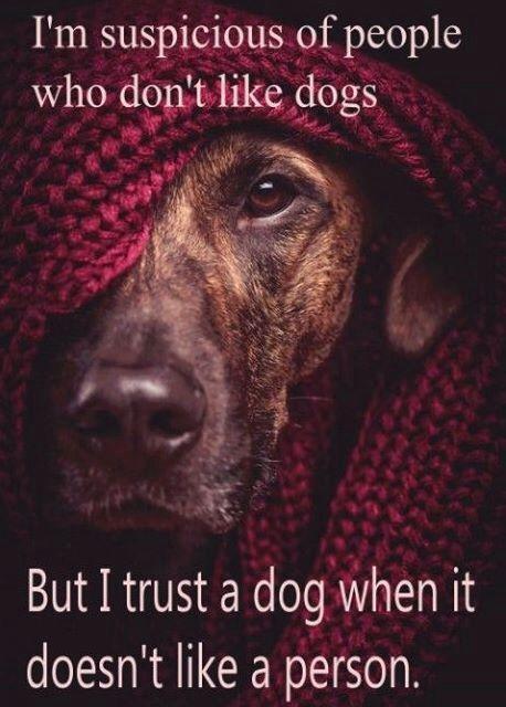 Doggah