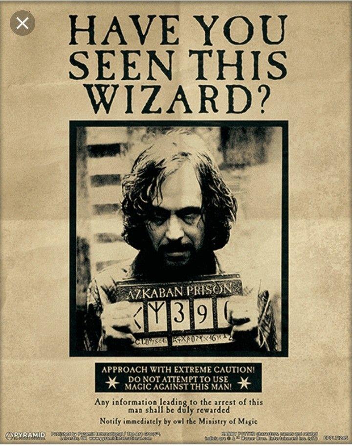 Avis De Recherche Harry Potter : recherche, harry, potter, Recherche, Poster, Harry, Potter,, Potter