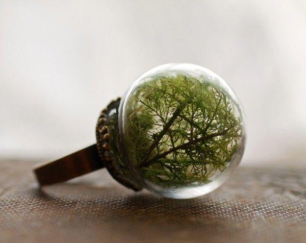 Nhẫn pha lê có kèm cây ở trong
