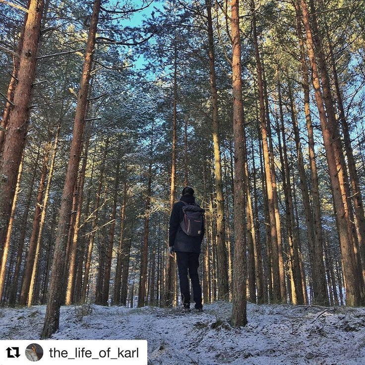 Winter tale by @the_life_of_karl  Blind Chic.