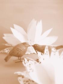 LillyTyll: Lotusblommor av tårtpapper