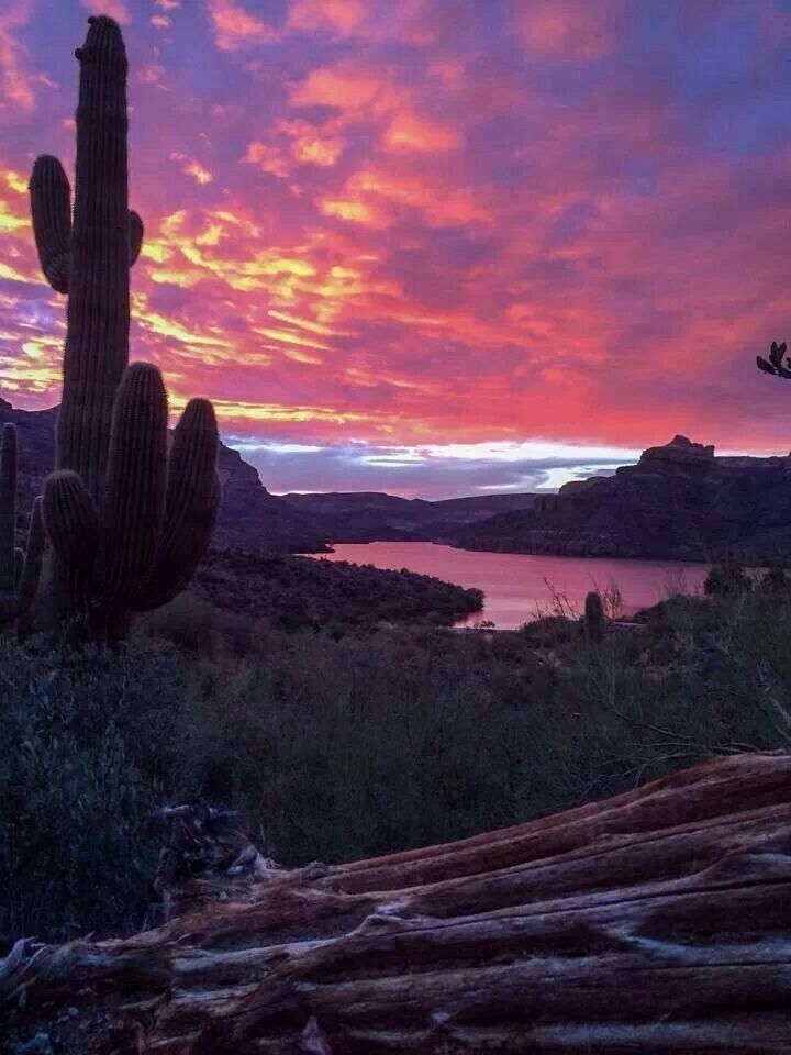 31 best apache lake my favorite place to be images on for Apache lake fishing