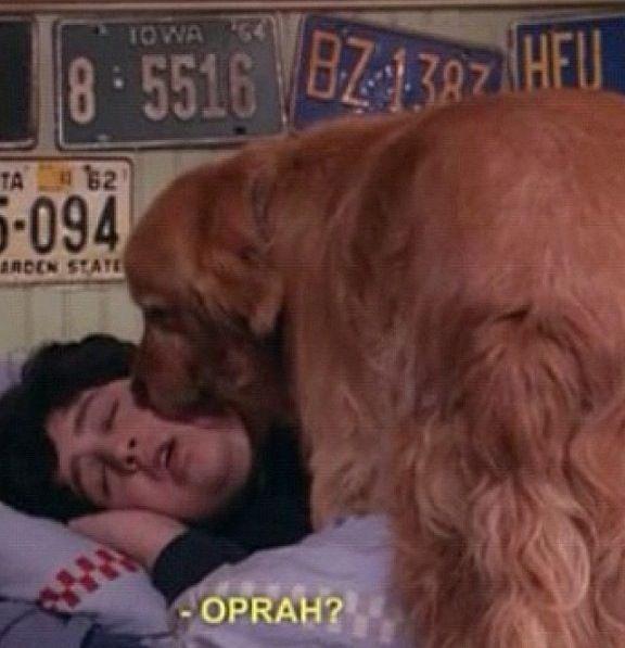 oprah!?  -drake and josh