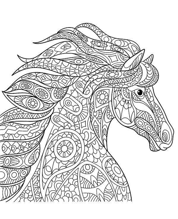 Volwassen Kleurplaat Paard Koń Malowanka Dla Dorosłych Koraliki Adult Coloring