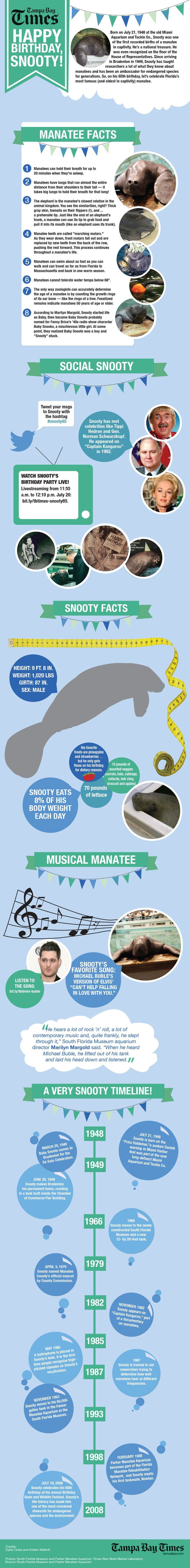 Snooty the manatee turns 65 infographic from the Tampa Bay Times