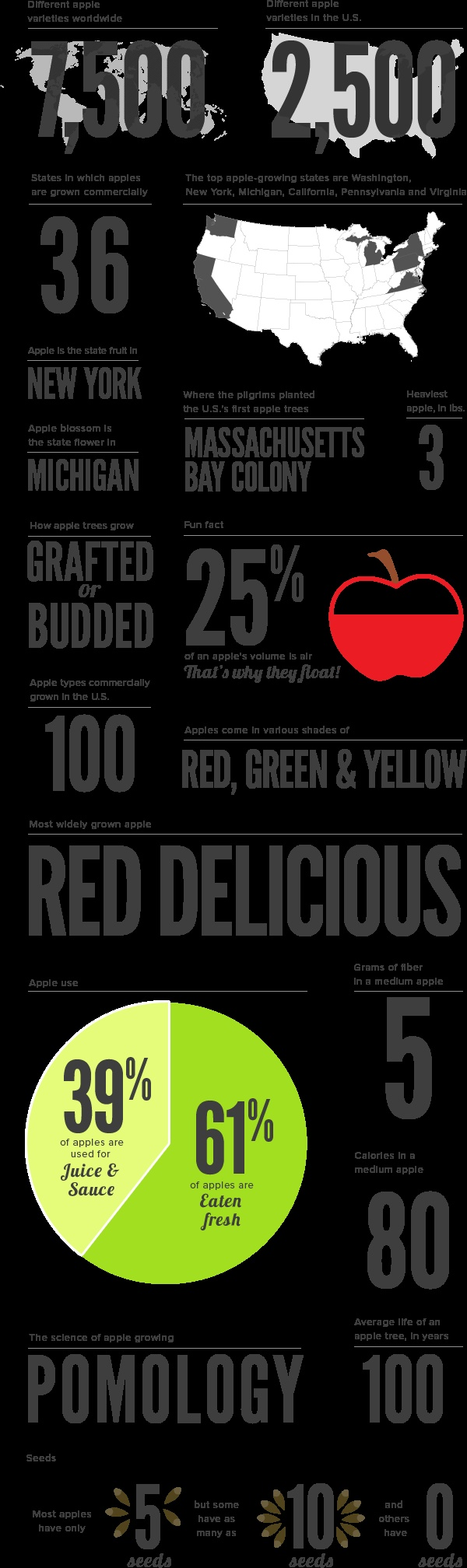 Facts About Apples: Facts Infographic