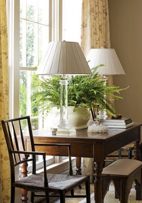 Love the potted sword fern and duplicate lamps