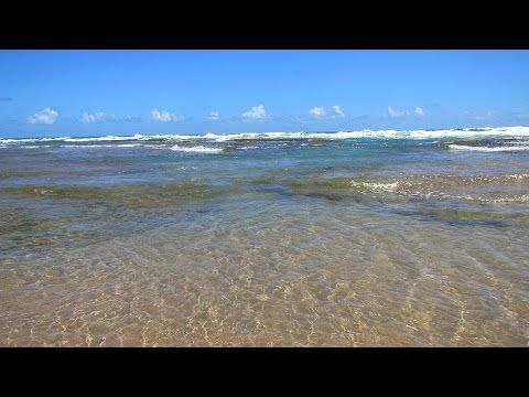 The ocean pools at Cattlewash and Bathsheba on the east coast of Barbados invite you to soak away your worries.