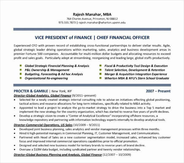 Chief Financial Officer Resume Example New 24 Free Finance Resume Templates Pdf Doc In 2020 Resume Examples Chief Financial Officer Job Resume Examples