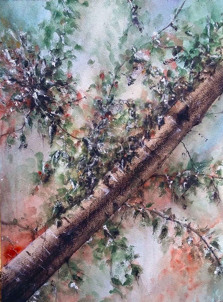 Un angolo di bosco    -  Acquerello 30x40cm