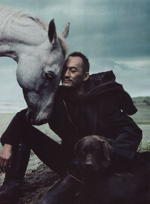 ken wantanabe: Ken Watanabe, Picture, Kenwatanabe, Annie Leibovitz, Hors And Dogs, Portraits, People, Photo, Animal