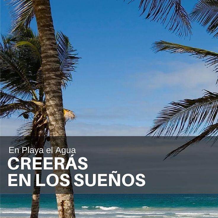 Nuestros hoteles @ldhotelpalmbeach @ldhotelleflamboyant y @h2ohotel perfectamente ubicados en #PlayaElAgua le están esperando donde sentirás una satisfacción completa desde el Check In hasta el Check Out. #LDHoteles distintas experiencias  el mismo placer.  #CreerasEnLosSueños #LD #Isla #Hoteles #Hotel #IslaDeMargarita #island #Vacaciones #Playa #Venezuela #PlayaElAgua #Beach #Isla #Palm #PalmBeach #Descanso #Piscina #LDPalmBeach #LDLeFlamboyant #H2otel #Sand #Art by ldhoteles