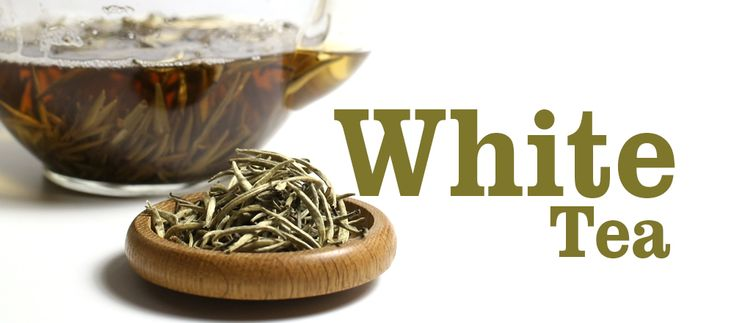 White Tea is a more unknown beverage, but it contains so many health benefits such as aiding weight loss and decreasing blood pressure just to name a couple. It is also contains less caffeine than Black Tea, Green Tea and Oolong Teas! Read our lasted blog to find out more that you didn't know about White Tea and why not share with a friend? https://www.tea-and-coffee.com/blog/white-tea-benefits