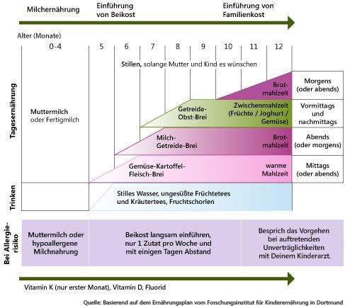 Wann braucht das Baby was? Der Baby-Ernährungsplan des Forschungsinstituts für Kinderernährung (FKE) in Dortmund zeigt Dir ganz übersichtlich: Wie läuft die Still- und Beikostzeit ab? Wann kannst Du mit welchen Lebensmitteln anfangen?