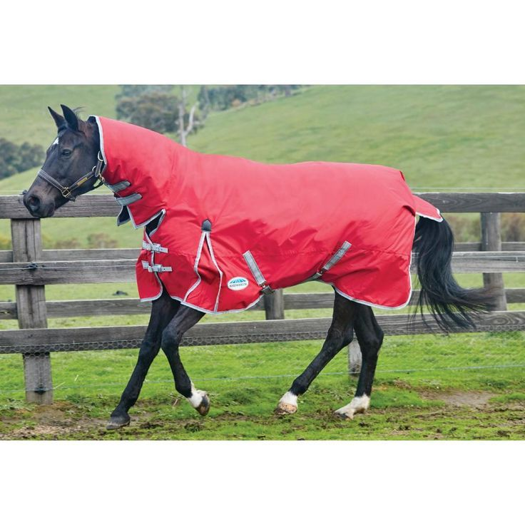Best On Horse Heavyweight Equestrian Pony Horse Riding Breathable Waterproof Full Neck Combo Turnout Winter Rug All Colours /& Sizes