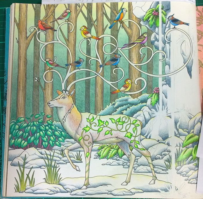 17 Best Images About Peta Hewitt Colouring Tutorials On