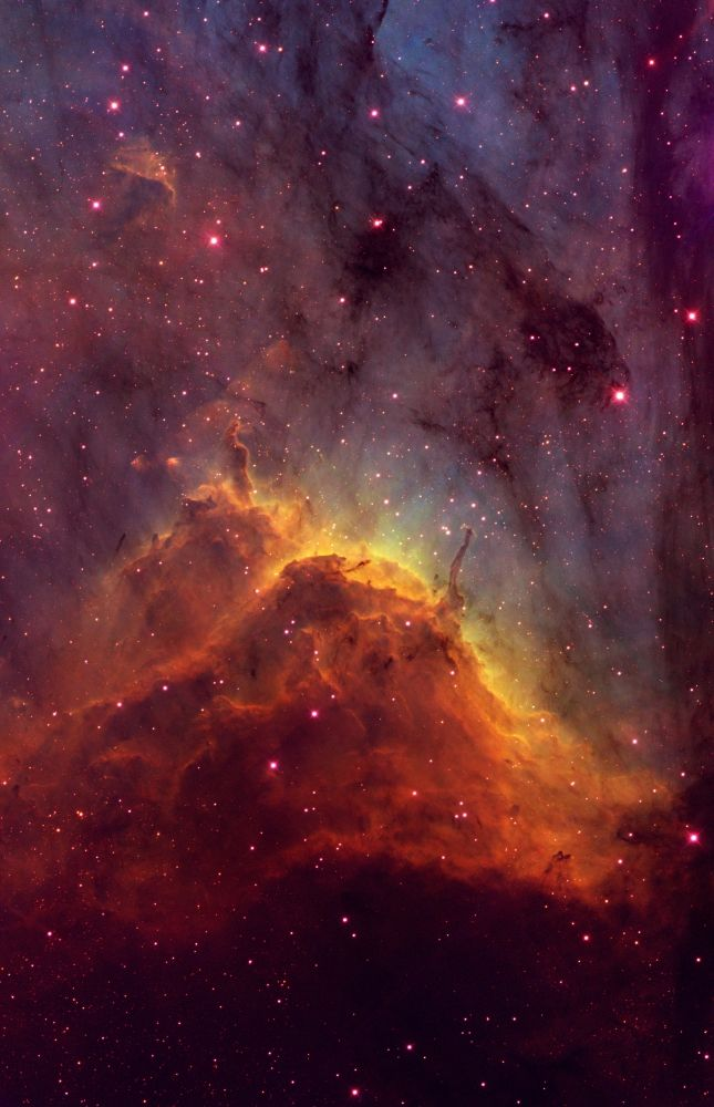 The Pelican Nebula (IC 5070) is located in the constellation of Cygnus, the Swan. Its pillars are being sculpted by the intense ultraviolet radiation from massive stars which have recently formed within the nebula.