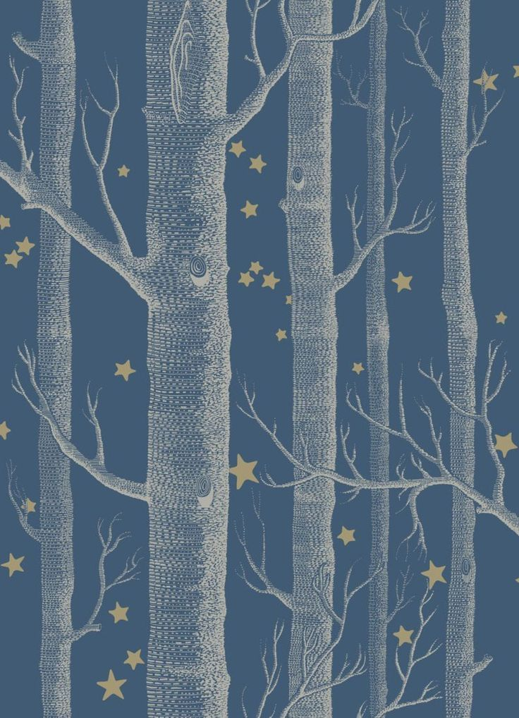 The iconic woods design now ushers you into the most fairytale of worlds, a forest of silver birches and dainty star clusters.