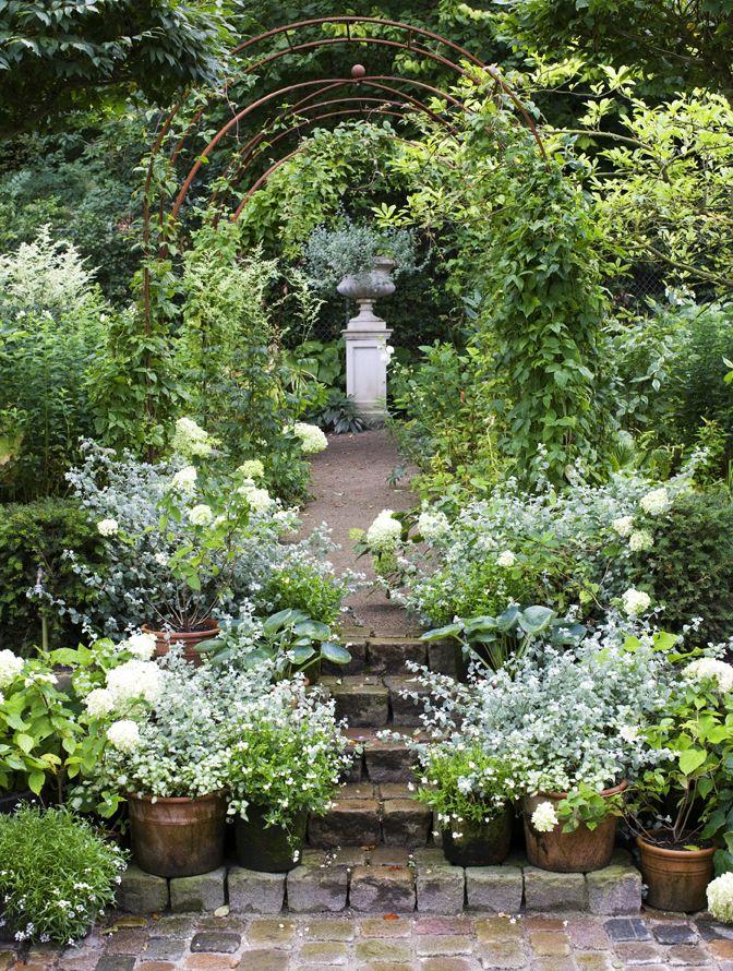 Med nivåskillnader i form av små trappor och avsatser skapas fina små rum i trädgården. På vägen mot rosenbågarna kantar vita växter som exempelvis krukodlade hortensior och den vackra gråbladiga rabatteternellen Helichysum petiolare.Trädgård - Skonahem