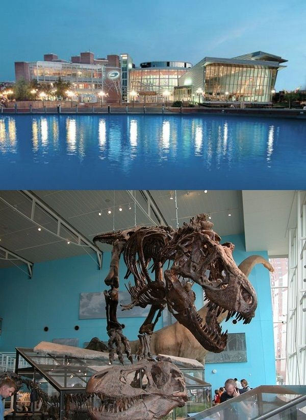 15 Most Popular Science Museums in the World