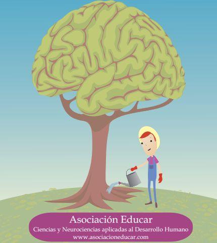 La calidad del contexto influye para que el cerebro pueda contar con un estado óptimo necesario para el aprendizaje. Elementos conocidos y agradables otorgan sensación de seguridad y de bienestar (...