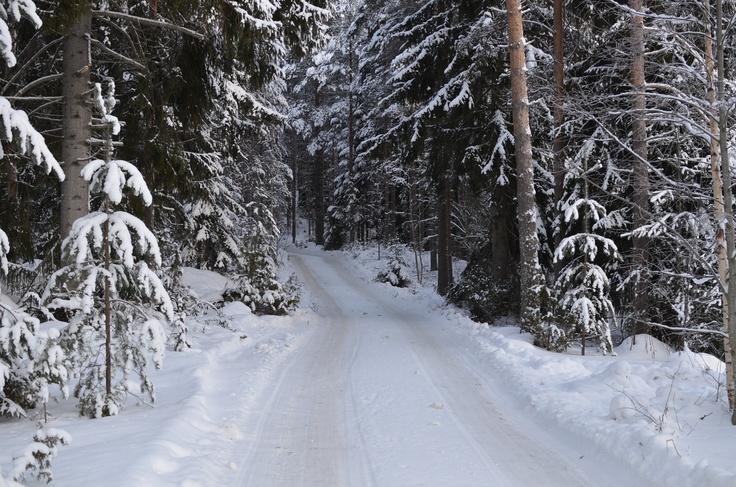 Kainiemi winter 2013