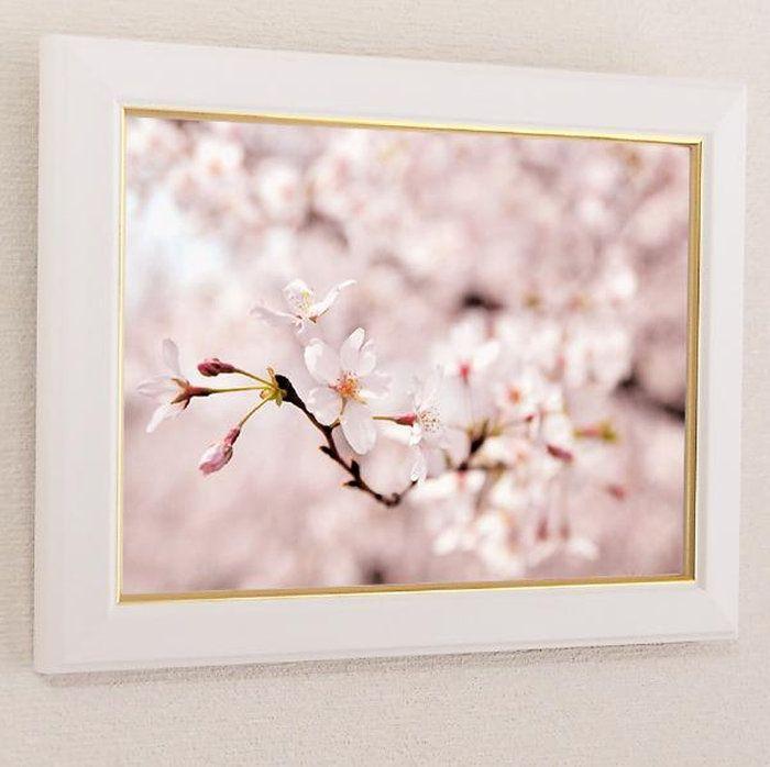 壁掛けアートアートパネル風景画フォトグラファーy2-hiro写真A4額縁付き桜サクラマクロ植物ピンク自然母の日花ギフトインテリア雑貨キャンバスジグレー版画
