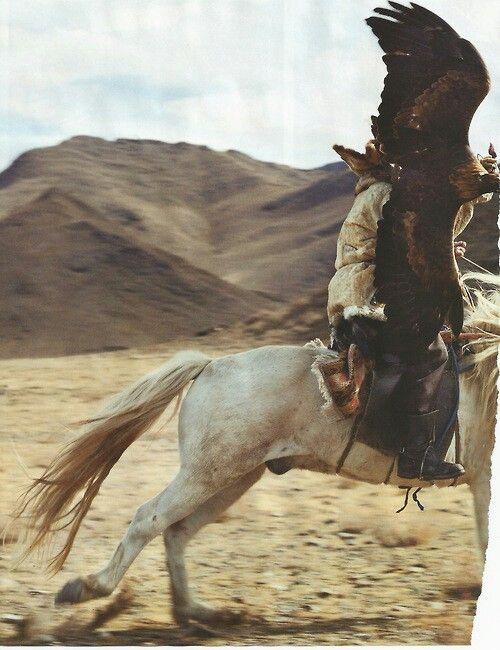 Eagle and horse