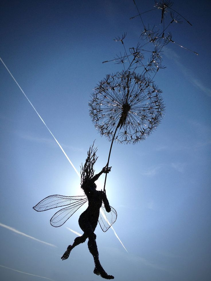 Robin Wight, a UK-based sculptor that works primarily with stainless steel wire, has mastered the creation of enchanting and dynamic fairy sculptures that seem to dance in or struggle against the wind.