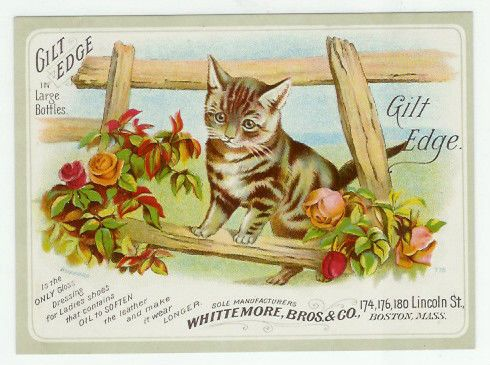 Trade Card Cat Gilt Edge Ladies Shoe Cleaner Polish 1880s | eBay