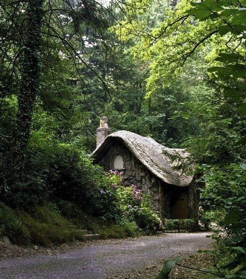 ideias sobre jardins:Cottage in the Woods