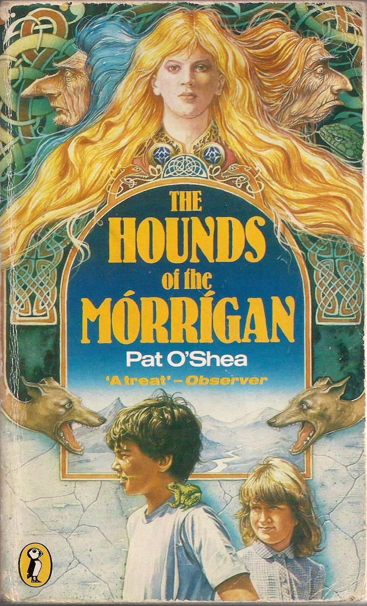 Hounds of the Morrigan by Pat O'Shea, front cover by Stephen Lavis