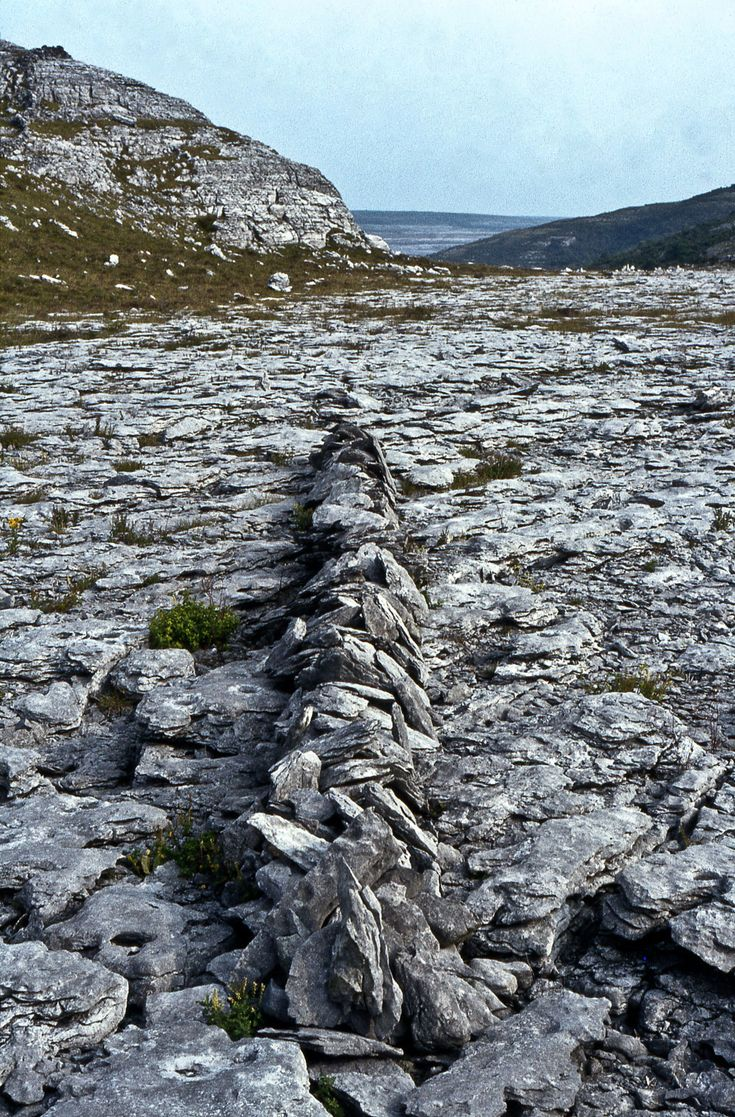 Richard Long. A line in Ireland, 1974