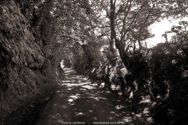 Poplar Lane Cannock, Staffordshire. (near the UK's most haunted public house, The Four Crosses.)