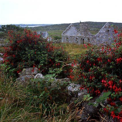 Ireland Landscape   ... van Velzen photography: webarticles, what is landscape photography