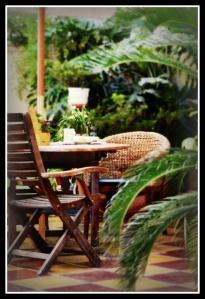 My little jungle :)