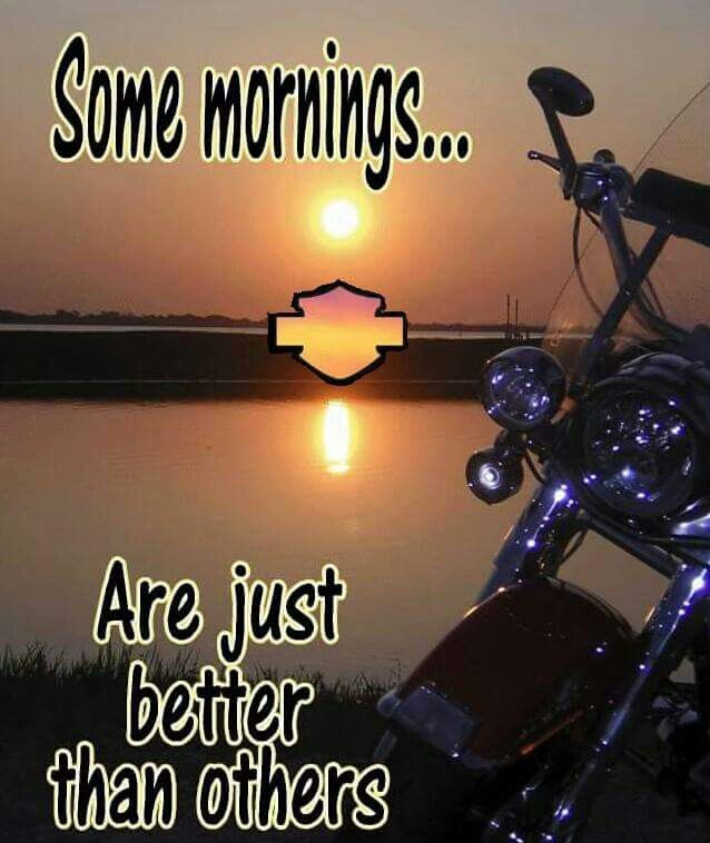 Pin By Tammy Pierce On Harley Morning | Pinterest | Harley Davidson Art And Harley  Davidson Design