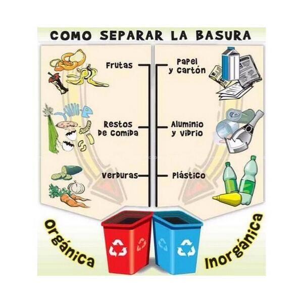 Resultado De Imagen Para Basura Organica E Inorganica Separacion De Basura Basura Organica Reciclar Basura