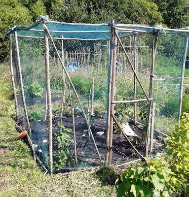 rustic fruit cage