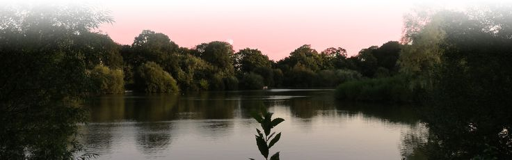 Set in a beautiful idyllic woodland location on the edge of The New Forest, Sopley Lake is the ideal venue for your wedding reception, special party or corporate event and is available to hire from mid April to October.