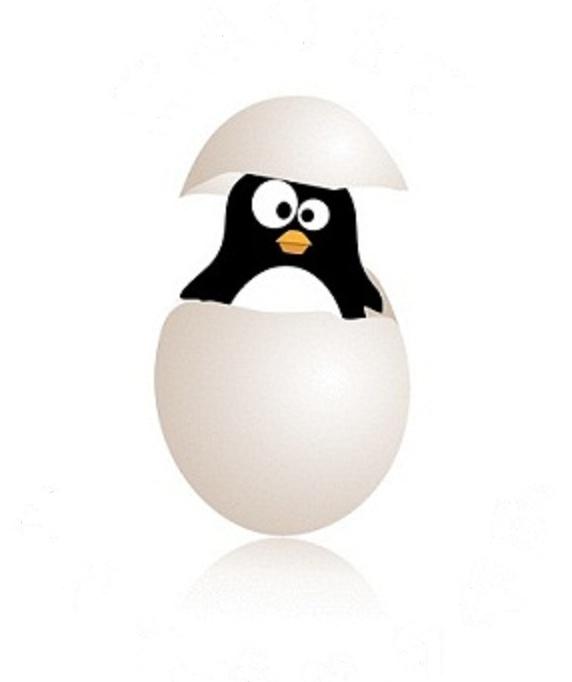Mejores 128 imágenes de Penguins en Pinterest | Pingüinos, Buñuelos ...