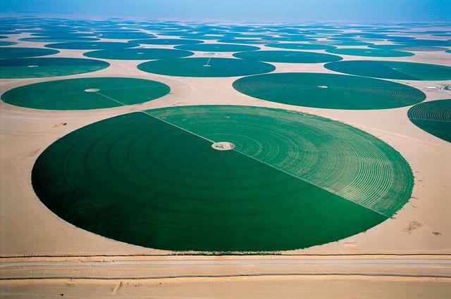 Agriculture in the desert - Saudi Arabia