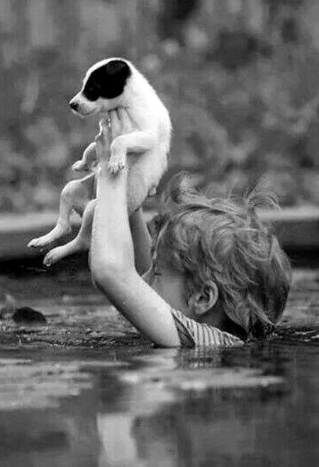 Pitou d'abord. Photo noir et blanc #serrurier http://serrurier-bezons.lartisanpascher.com