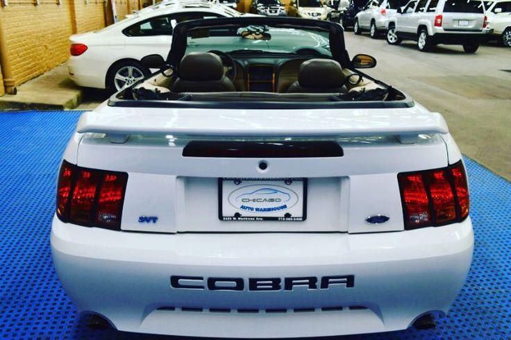 2001 Ford Mustang SVT Cobra Convertible Only 50k Miles V8