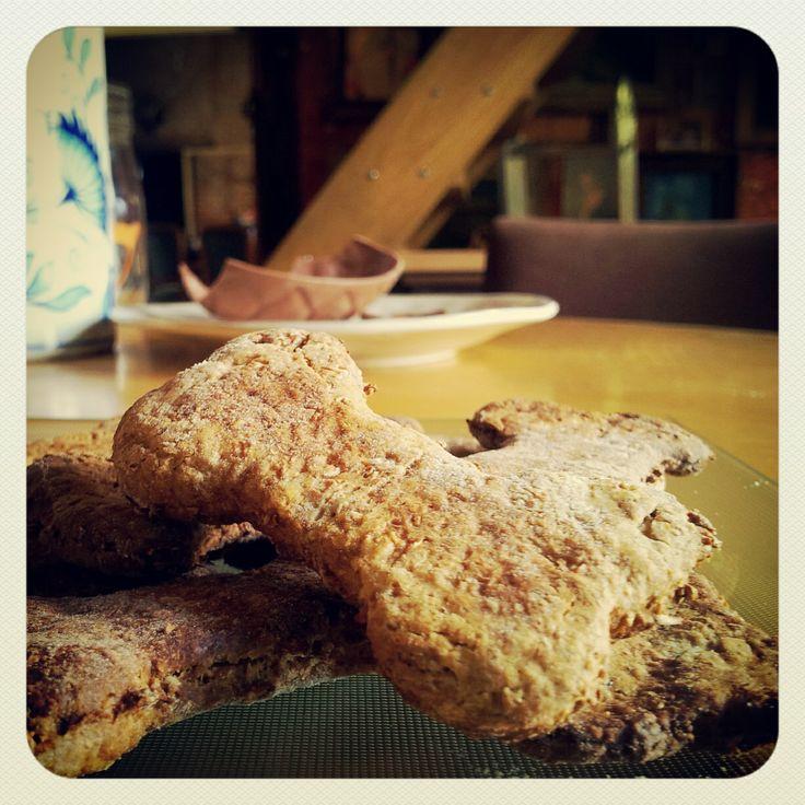 Biscuits pour chien au miel et flocons d'avoine.